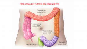 Frequenza colon retto
